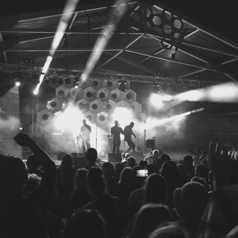 Farmfest 2016 Review - Friday