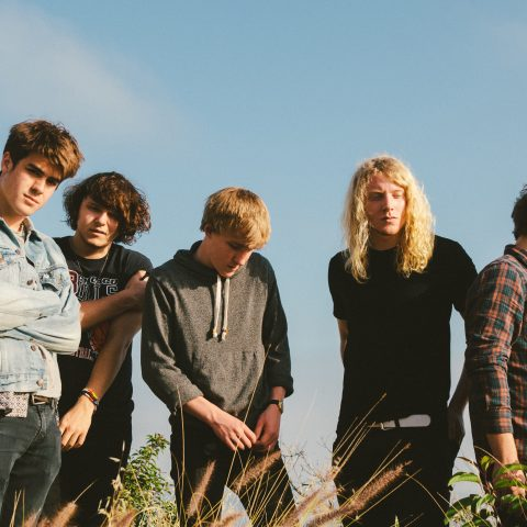 The Orwells Review - Thekla