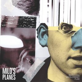 Milo's Planes - Individual Development Plan