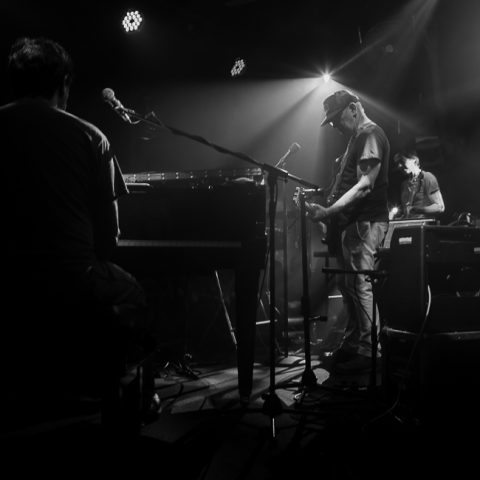 Lambchop Photoset - The Fleece 11