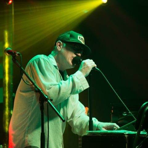 Lambchop Photoset - The Fleece 6