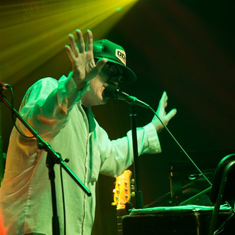 Lambchop Photoset - The Fleece 7