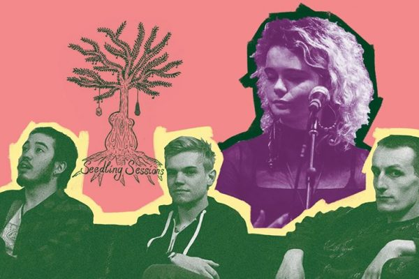 Seedling Sessions returns to showcase emerging talent 1