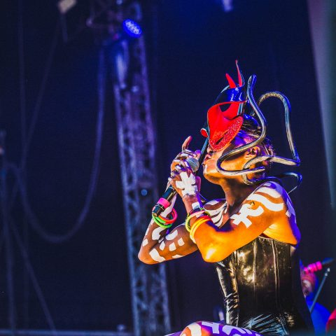 The Downs Festival Review + Photoset 27