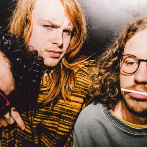 The Feed: LEECHES, Sigrid, Fickle Friends and more