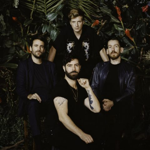 The Feed: Foals, Oro Swimming Hour, Sigrid and more